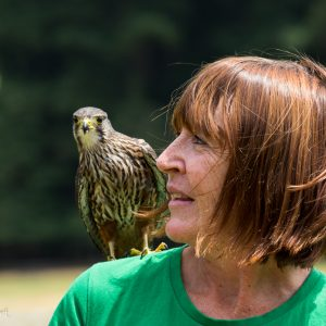 Debbie Stewart, Wingspan National Bird of Prey centre