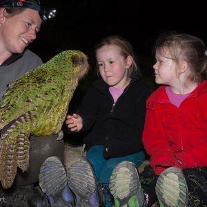 Famille Cole et Sirocco le Kakapo