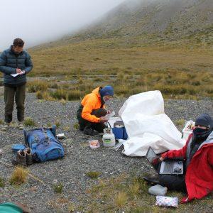 Le bureau de Sabine en Nouvelle-Zélande