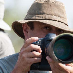 Olivier au Botswana