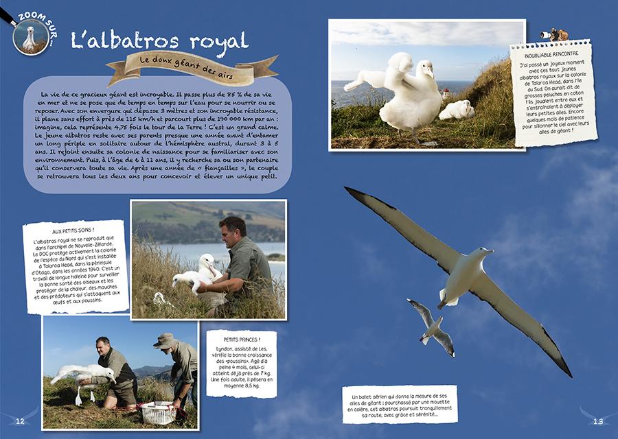 Double page albatros livre Nouvelle-Zélande
