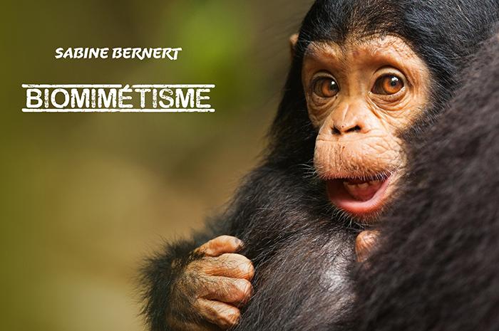 Couverture du portfolio Biomimétisme présentant un bébé chimpanzé