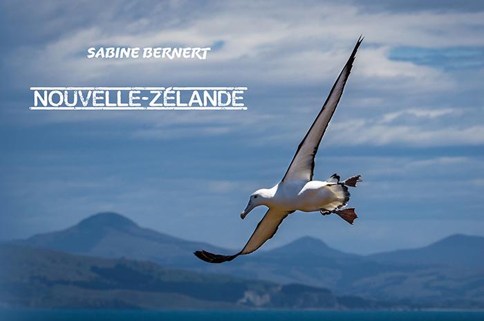 Couverture du portfolio Nouvelle-Zélande présentant un albatros royal en vol