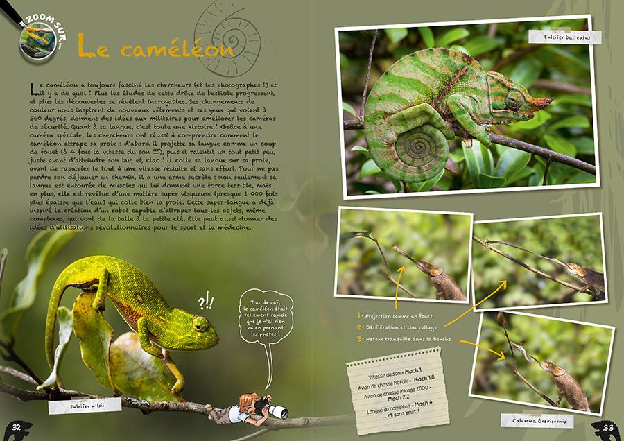 Double page caméléons du livre Géniale Nature
