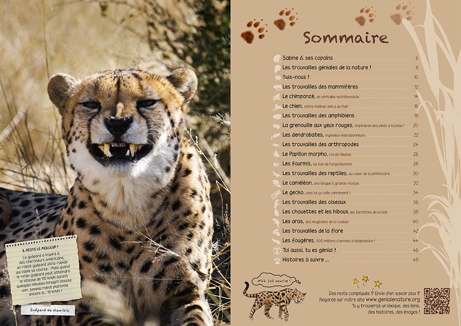 Sommaire du livre Biomimétisme